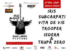 Old Blacks, Rock and More Festival: Reguli de acces