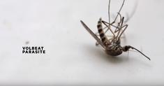 Volbeat a lansat o piesa noua, Parasite