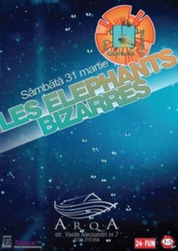 Concert LES ELEPHANTS BIZARRES in club Arqa din Timisoara