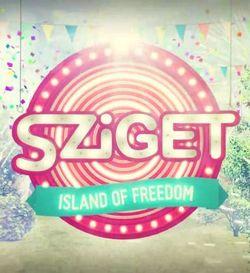 Sziget Festival 2013 in Ungaria