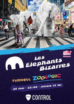 Concert Les Elephants Bizzares in Club Control din Bucuresti