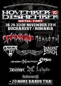 NDM Fest 2014 in noiembrie la Bucuresti