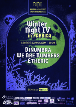 Winter Night in Fabrica part. IV pe 12 Ianuarie