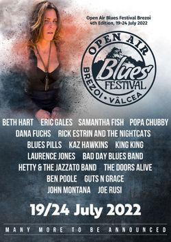 Open Air Blues Festival Brezoi 4th Edition