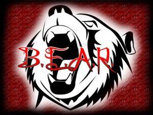 B.E.A.R.
