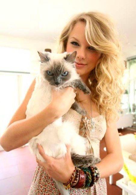 Poze Poze Taylor Swift - With cat