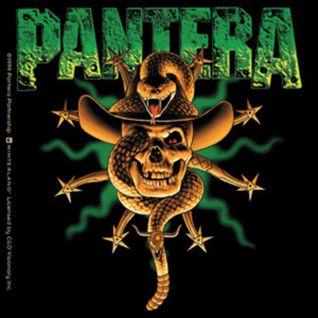 Poze Poze Pantera - FancluB PanterA