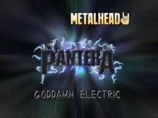 Poze Poze Pantera - pantera metal 1