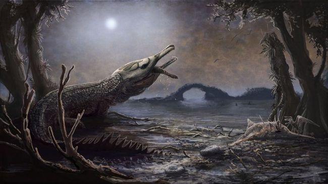 Poze Poze pentru articole - lemmy / crocodil