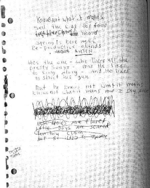 Poze Poze Nirvana - early in bloom lyrics