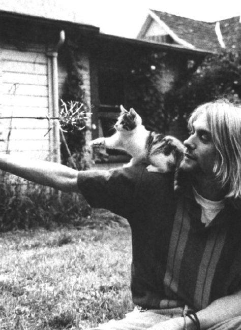 Poze Poze Kurt Cobain - Kurt and kitty 2