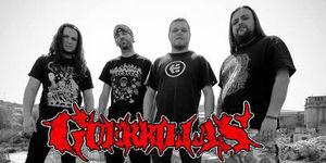 Guerrillas anunta primele concerte din turneul de lansare a noului album