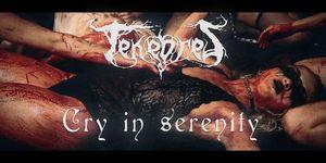 Tenebres lanseaza videoclipul piesei Cry in Serenity necenzurat