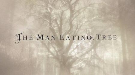 The Man-Eating Tree au lansat un videoclip nou: Amended