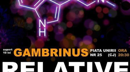 Concert Relative in Gambrinus Pub din Cluj