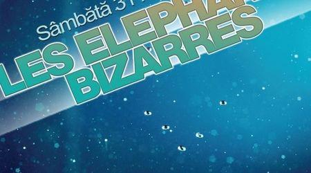 Concert LES ELEPHANTS BIZARRES in club Arqa din Timisoara
