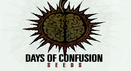 Days Of Confusion - Seeds (recomandare)