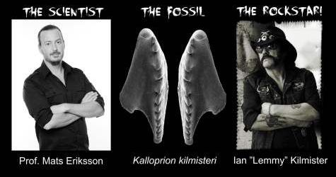 Danemarca gazduieste o expoizite despre fosile si heavy metal